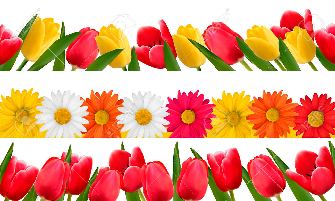 Spring Flower Borders Vector Royalty Free Cliparts Vectors And
