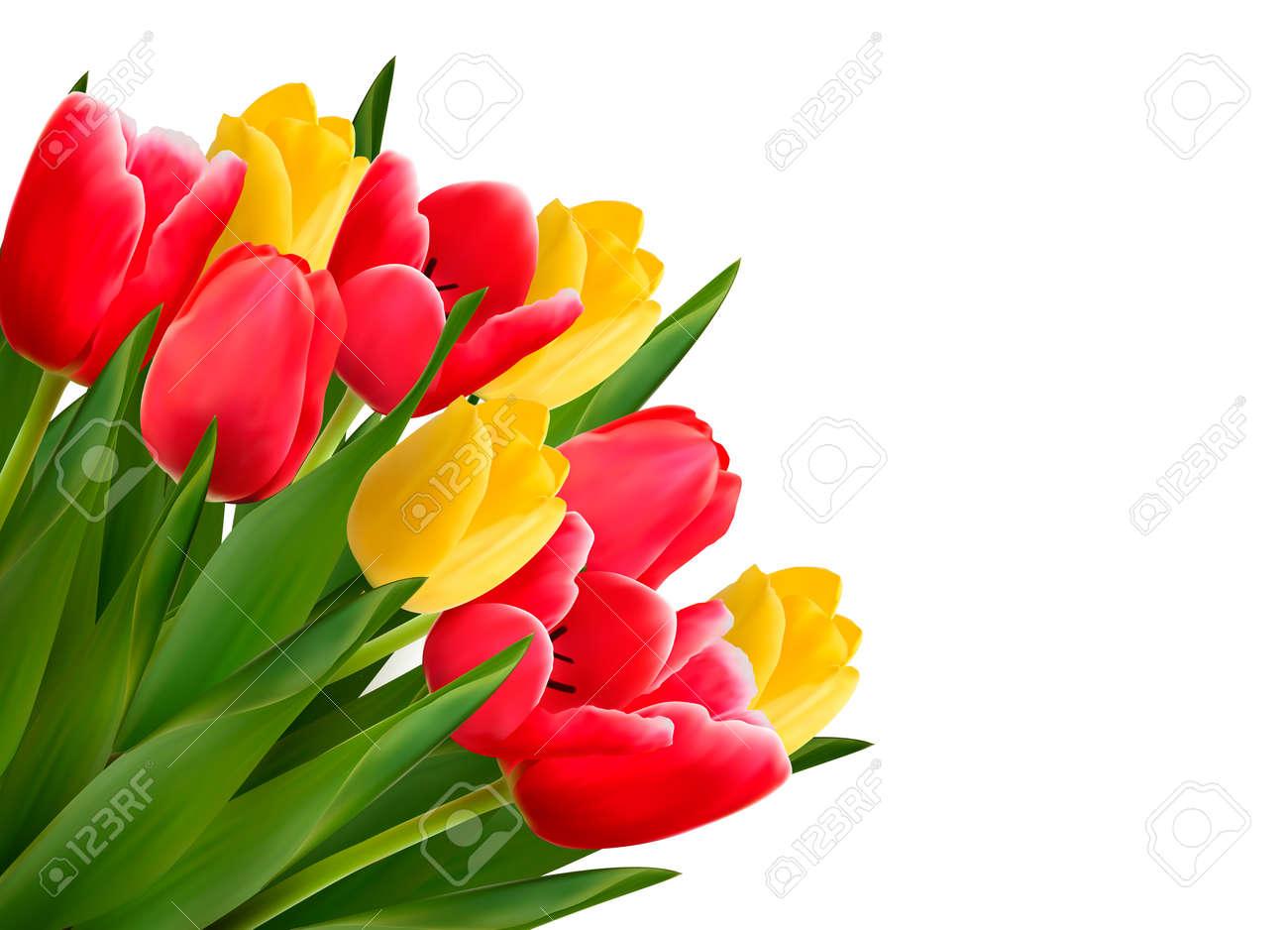 foto de archivo ramo de flores rojas y amarillas en el fondo blanco vector