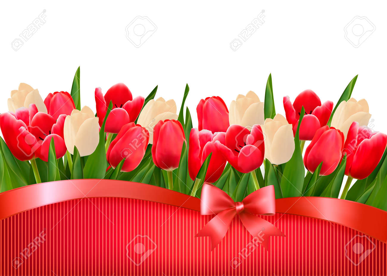 Holiday background with bouquet of red and white flowers with gift bow and ribbons. Vector. Stock Vector - 19279496