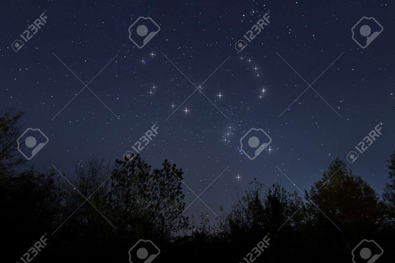 Constellation of Orion in night sky, The Hunter - 47921320