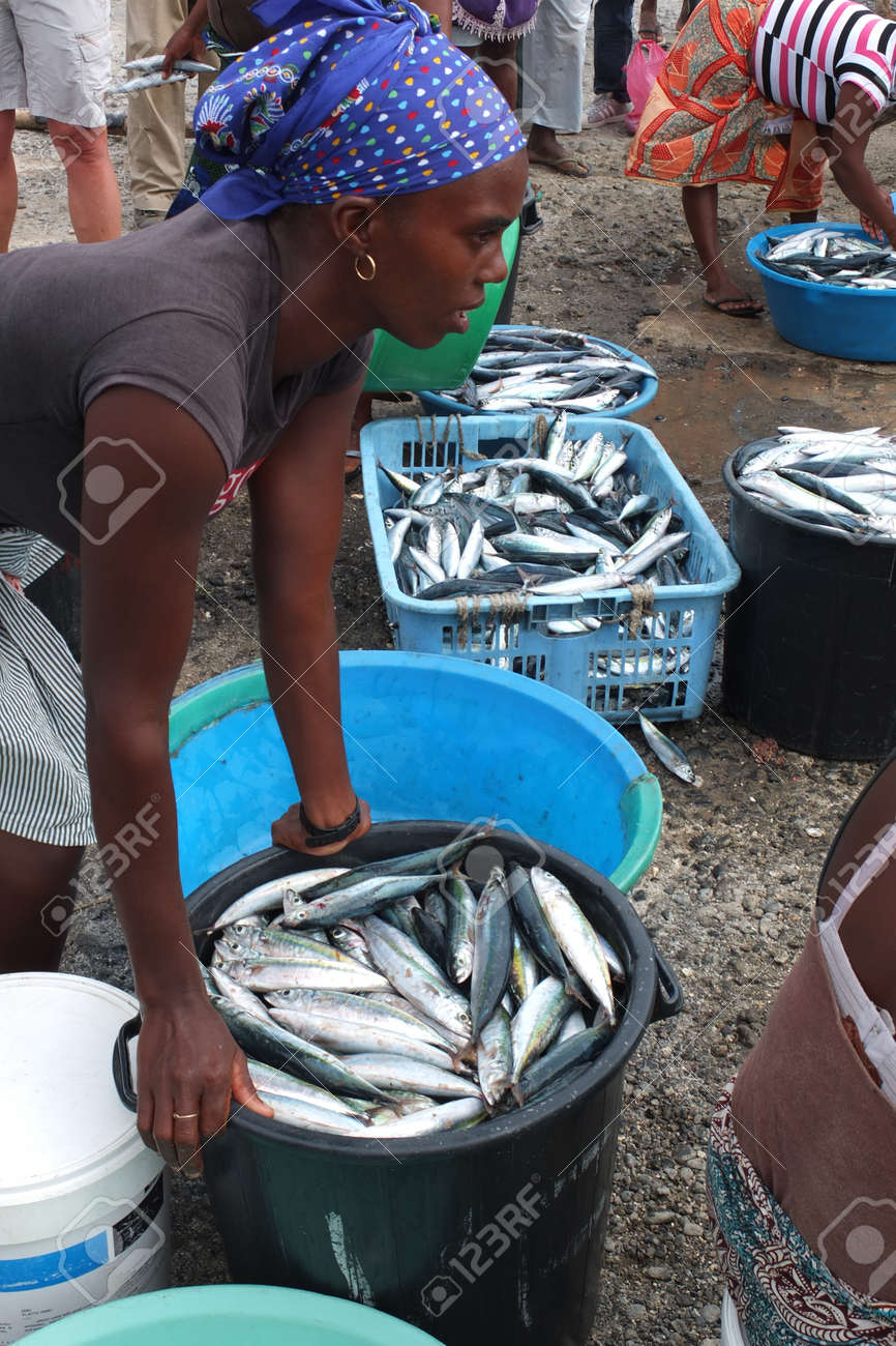 TARRAFAL, CAPE VERDE - NOVEMBER 29: an African woman has put mackerels in a bin. She is ready to carry them at the fish market, on November 29, 2012, in Tarrafal, Cape Verde. Stock Photo - 16972859