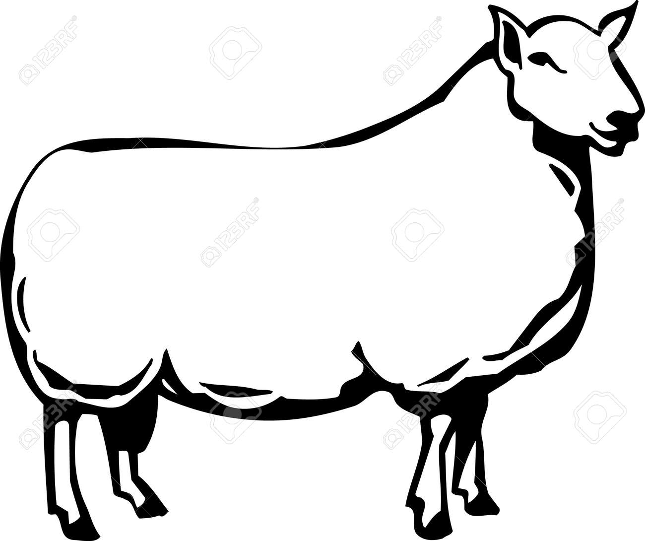 Sheep Stock Vector - 13014906