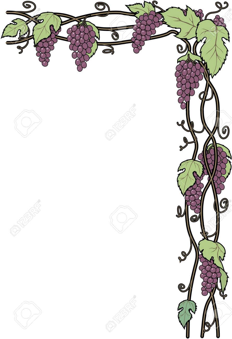 ブドウの木枠イラストのイラスト素材ベクタ Image 84042868