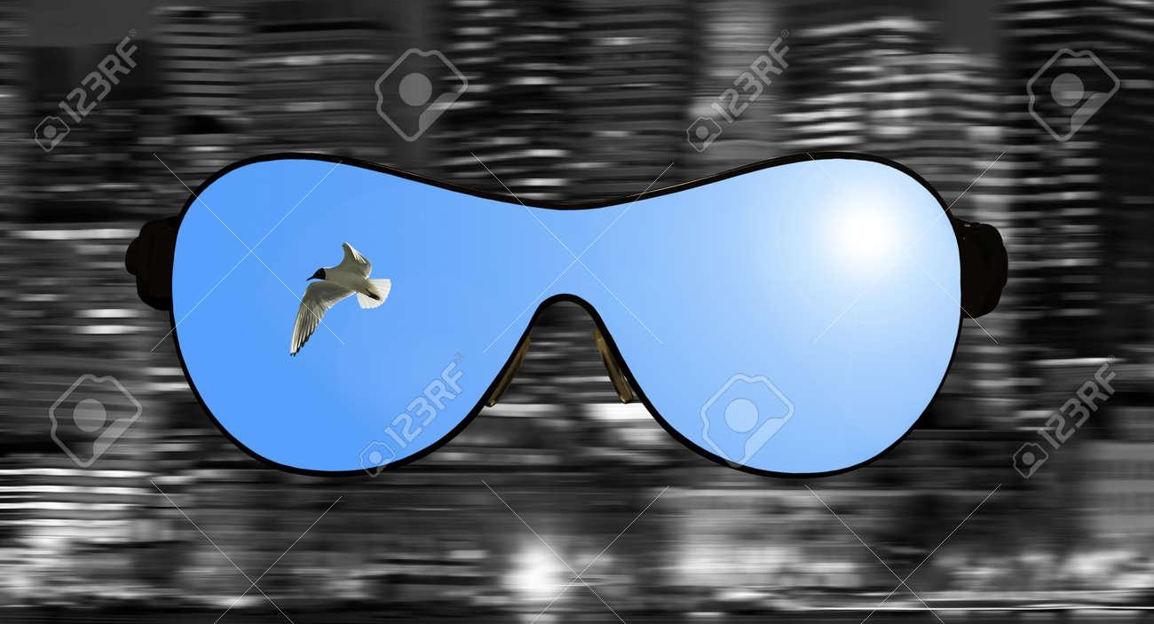 prezzo favorevole tecnologie sofisticate codice promozionale Occhiali con la riflessione del cielo e gabbiano in loro contro un panorama  della città