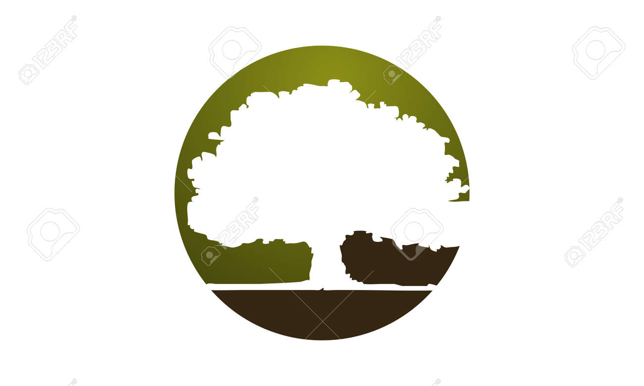oak tree logo design template vector royalty free cliparts vectors rh 123rf com oak tree logo design