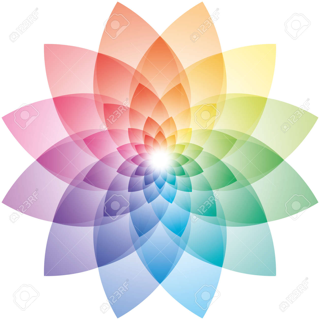 Beautiful Lotus Flower Color Wheel Vector EPS10 Stock