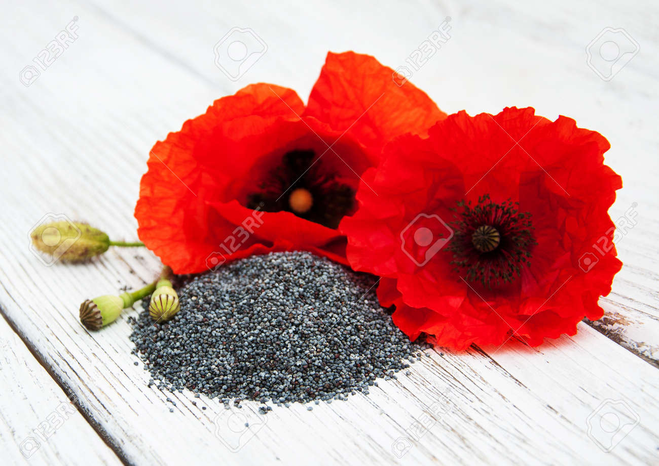 Poppy seeds and poppy flowers on a wooden background stock photo poppy seeds and poppy flowers on a wooden background stock photo 58400072 mightylinksfo