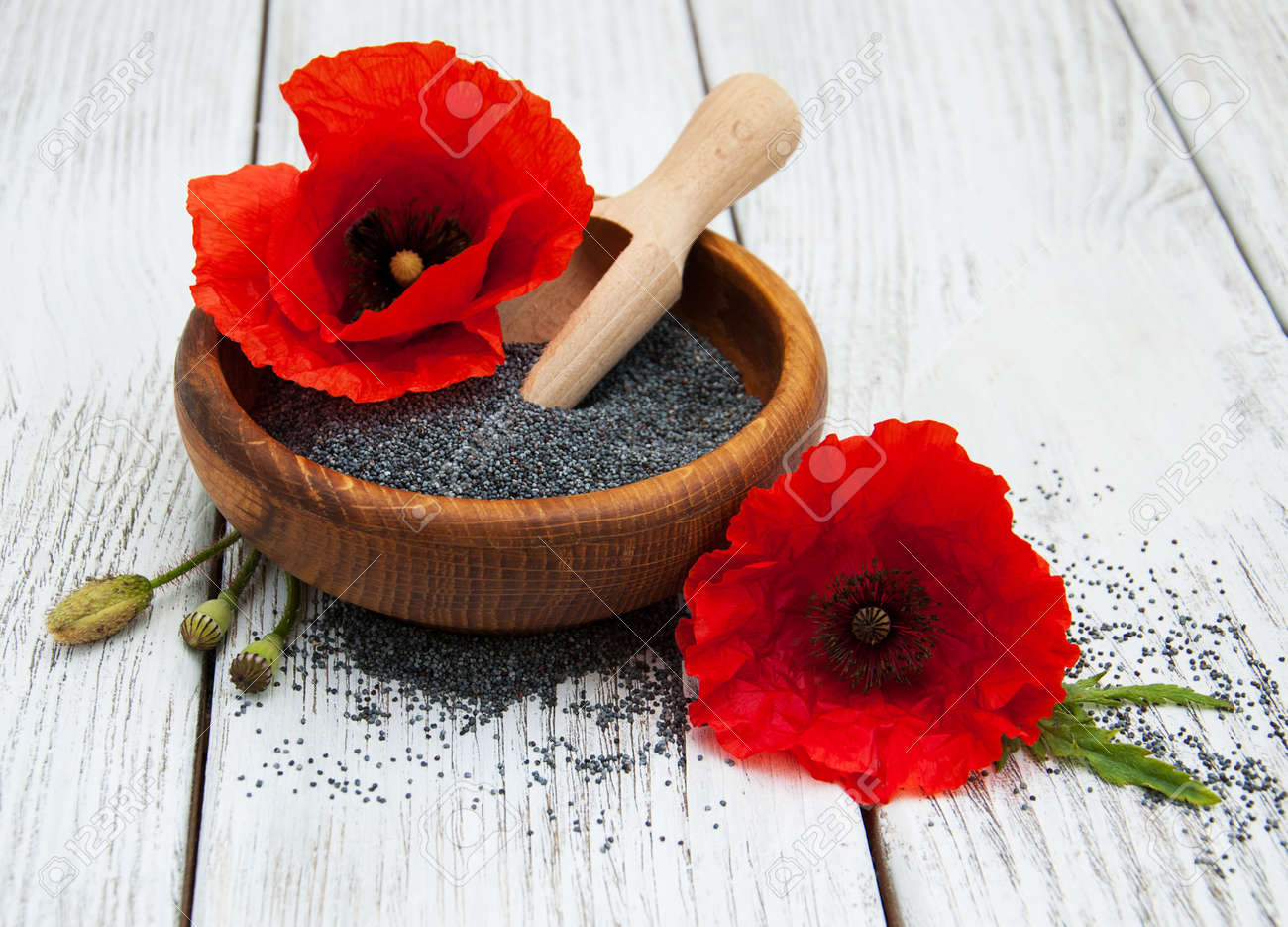 Bowl With Poppy Seeds And Poppy Flowers Stock Photo Picture And