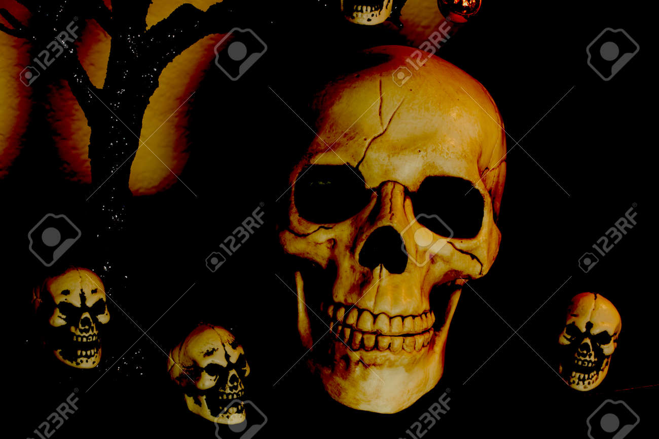 Halloween Skulls Small And Large Decorations For The Holiday Stock Photo 68961034