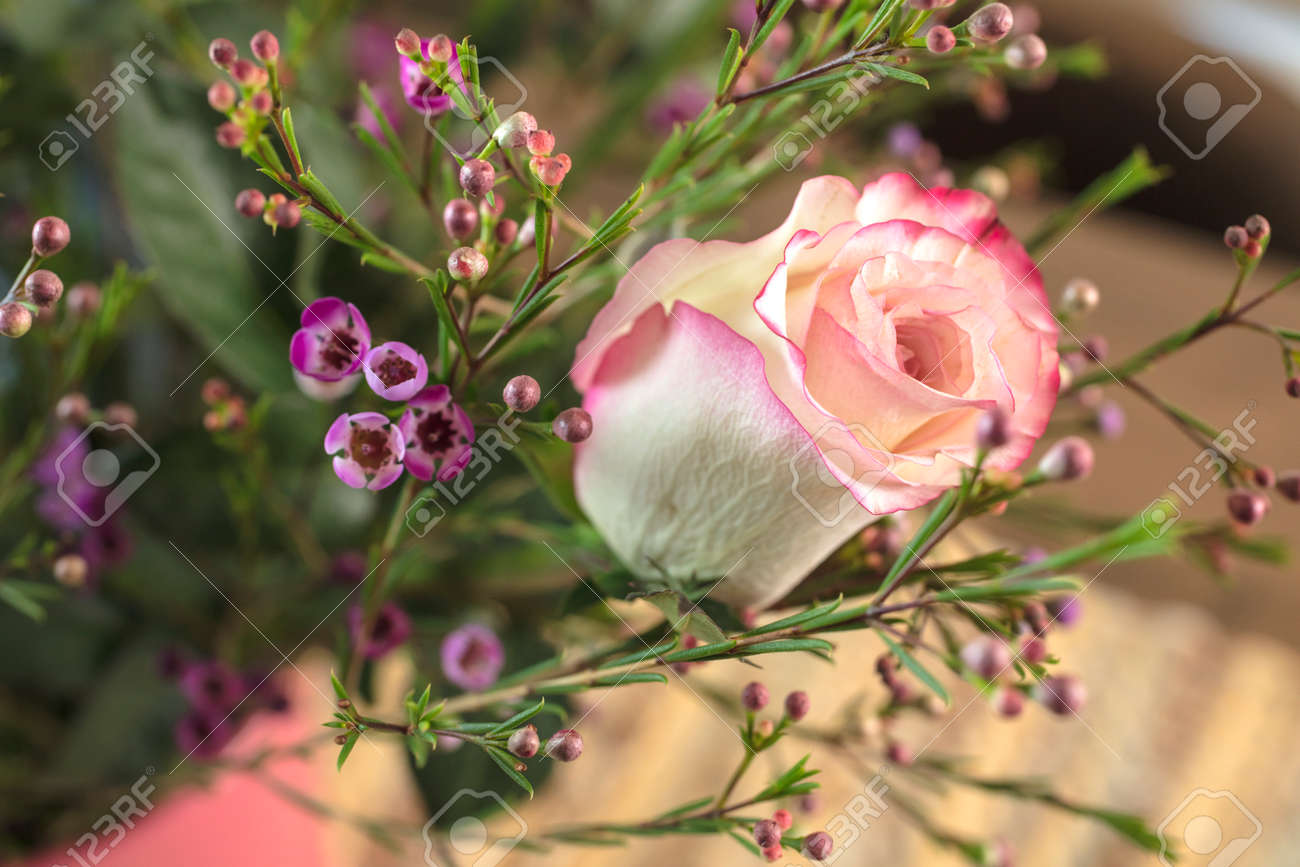 Bouquet Of White And Pink Roses And Waxflower For A Holiday Gift ...