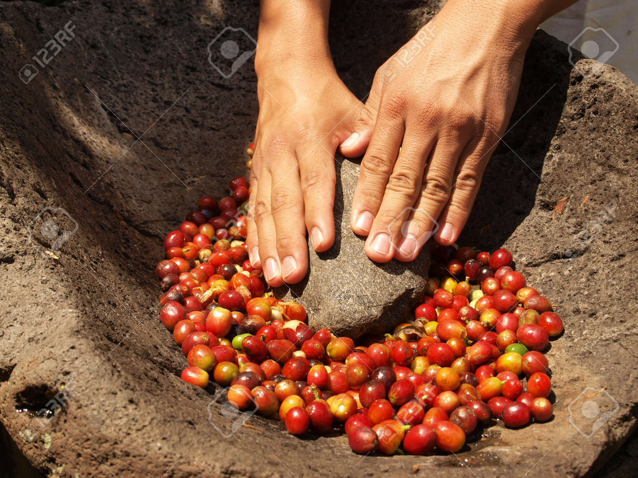 Grinding coffee berries in hand mortar Stock Photo - 12717921