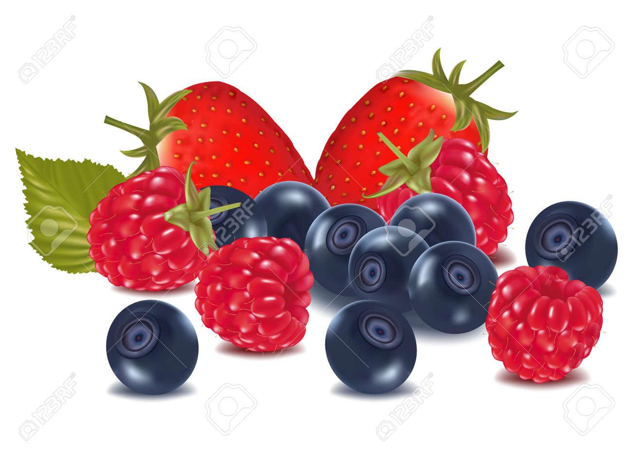 Raspberries, blueberries and strawberry . Stock Vector - 9665095