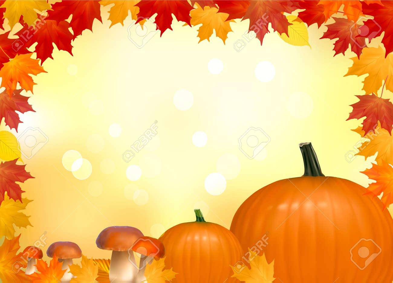 キノコ カボチャと秋の背景。コピー スペース。ベクトル イラスト