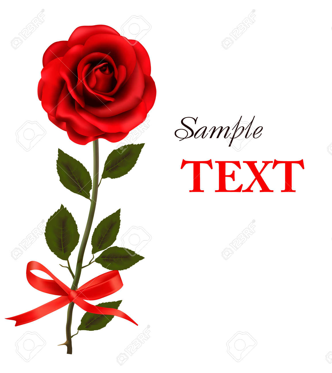 beautiful red rose on a white background. Stock Vector - 11098555