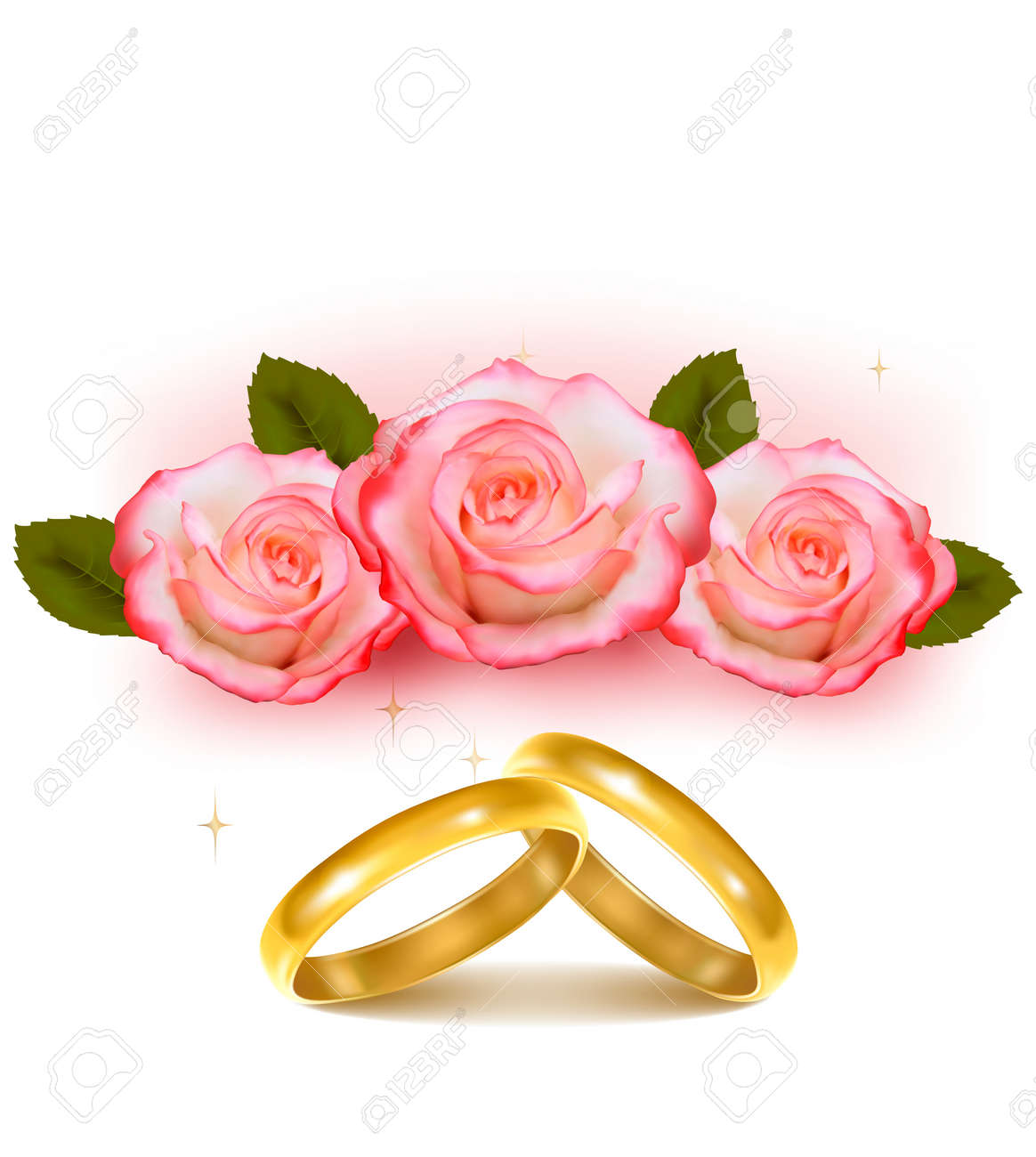 Gold Wedding Rings In Front Of Three Pink Roses Vector Royalty Free ...
