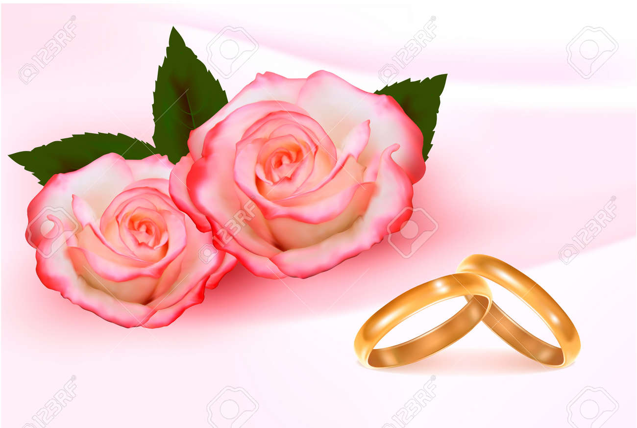 Gold wedding rings in front of three pink roses Vector - 12772811