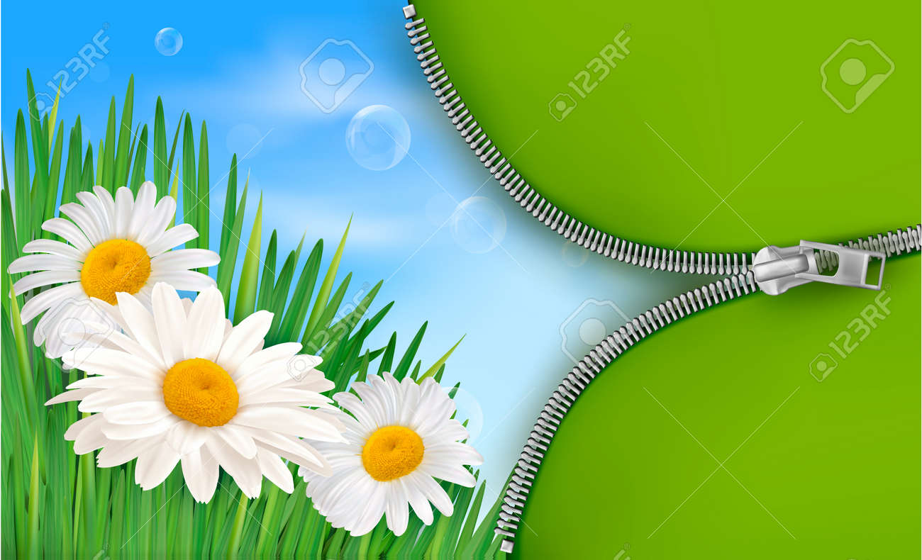 Nature background with spring flowers and open zipper. Vector illustration. - 12929965
