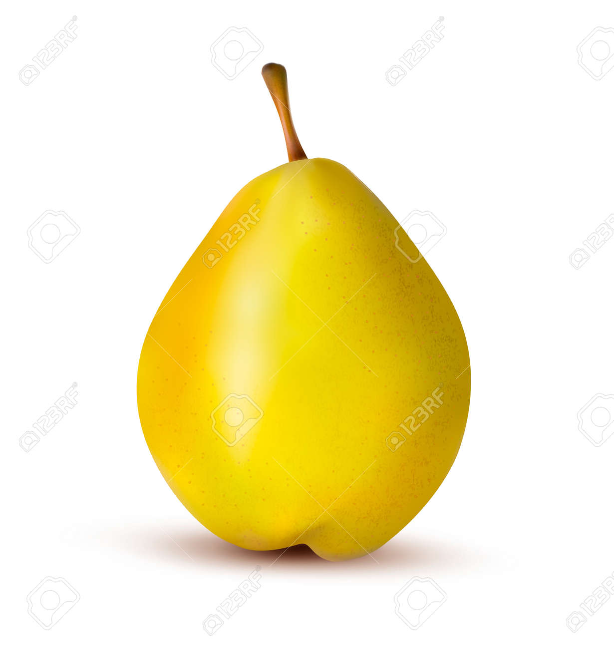 Rpe pear isolated on white. Stock Vector - 16915189
