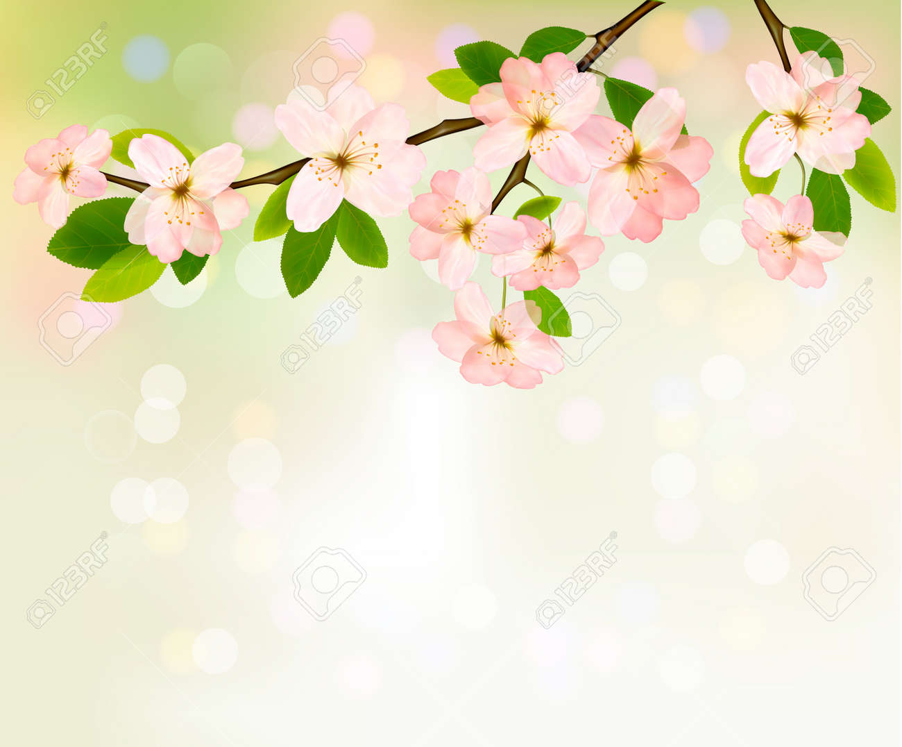 Spring Background With Blossoming Tree Brunch With Spring Flowers