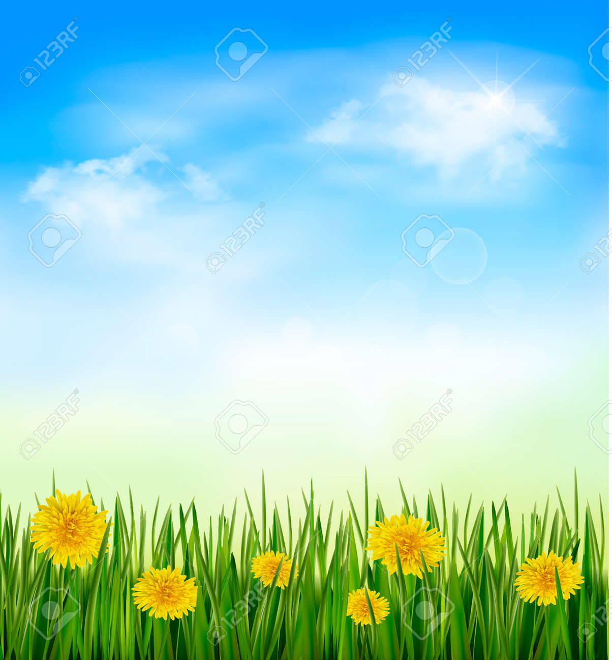 green grass blue sky flowers fence background nature background with green grass and flowers blue sky stock vector 20193246 background with green grass and flowers blue sky royalty