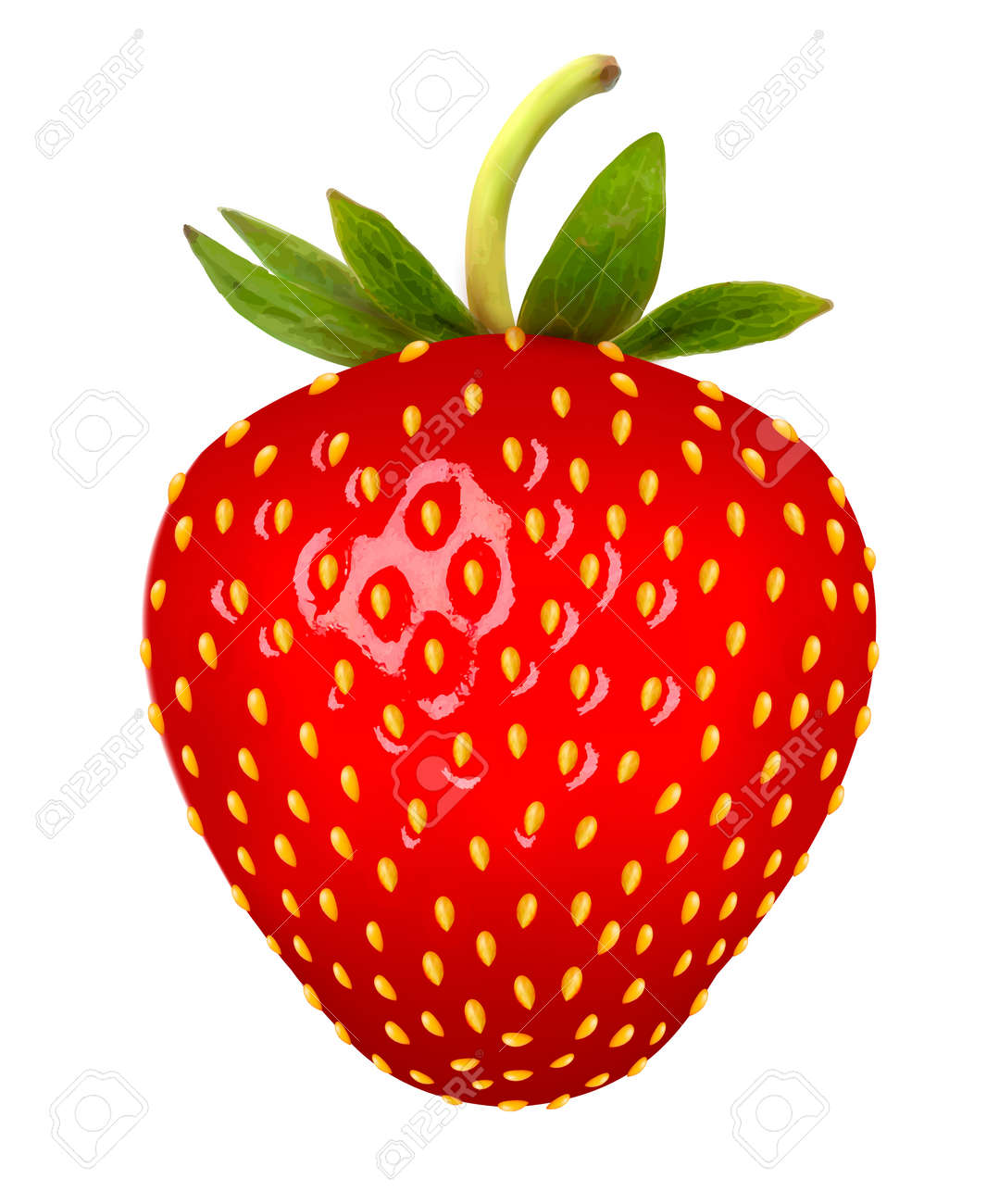 strawberry vector royalty free cliparts vectors and stock rh 123rf com strawberry vector free strawberry vector background