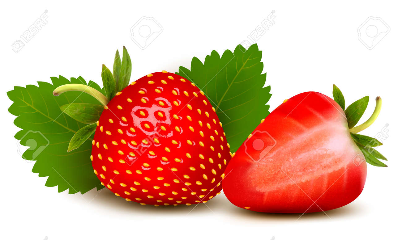Two strawberries with leaves . Vector. - 21402397
