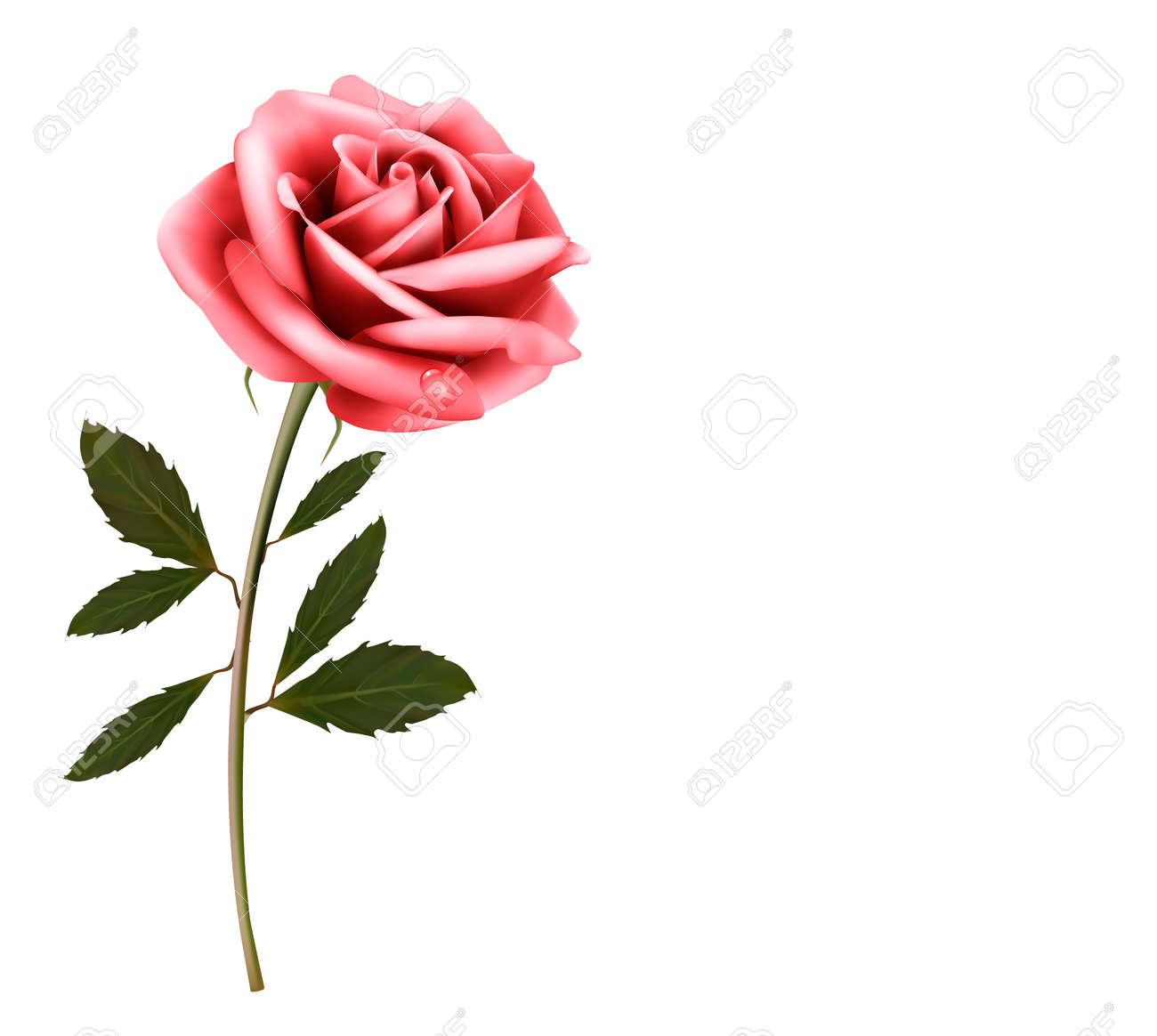 Flower Background With A Pink Rose Vector Royalty Free Cliparts