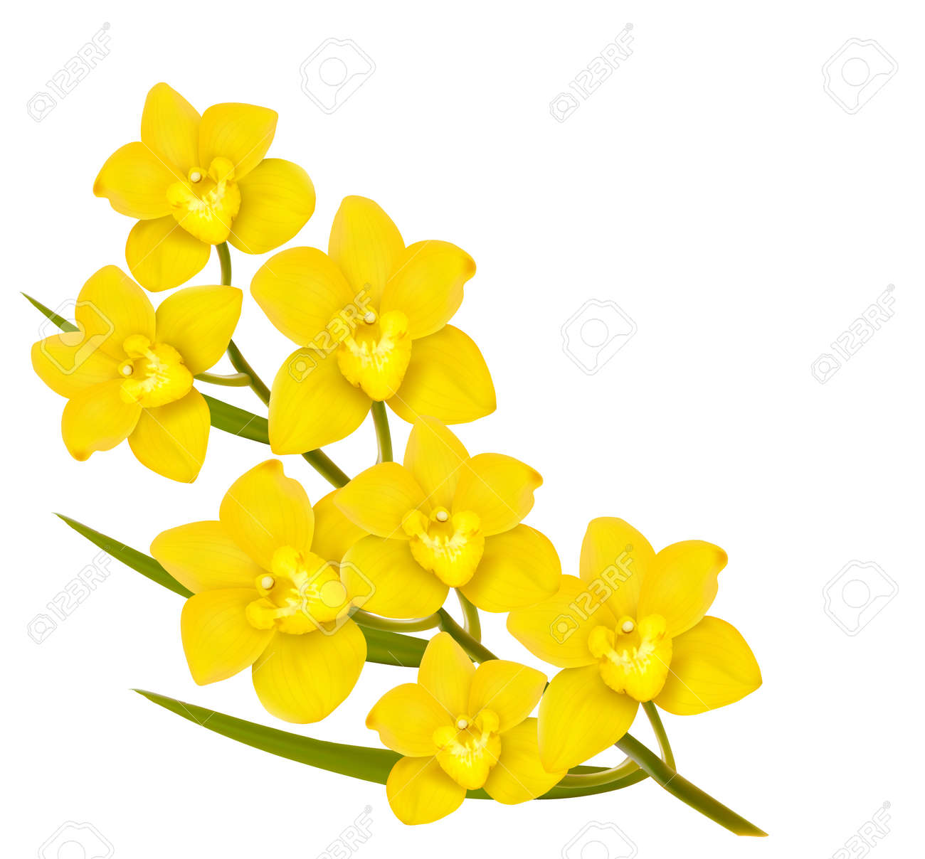 Holiday yellow flowers background vector royalty free cliparts holiday yellow flowers background vector stock vector 37153214 mightylinksfo