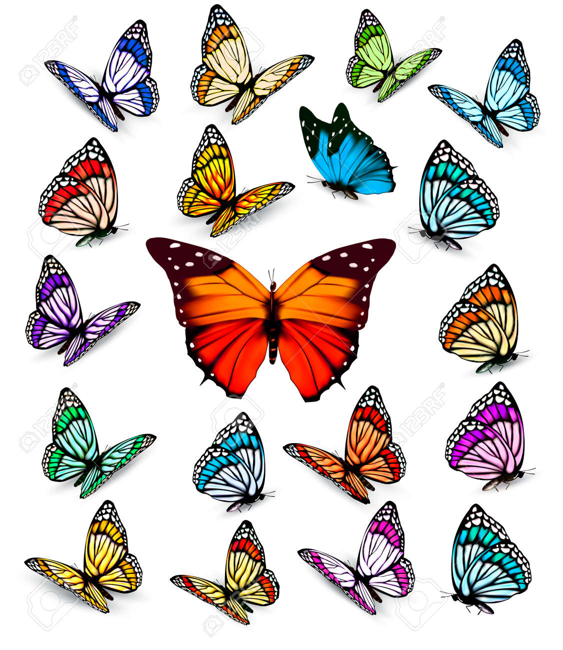 set of different colorful butterflies vector royalty free cliparts rh 123rf com free butterfly vector art free butterfly vector silhouette