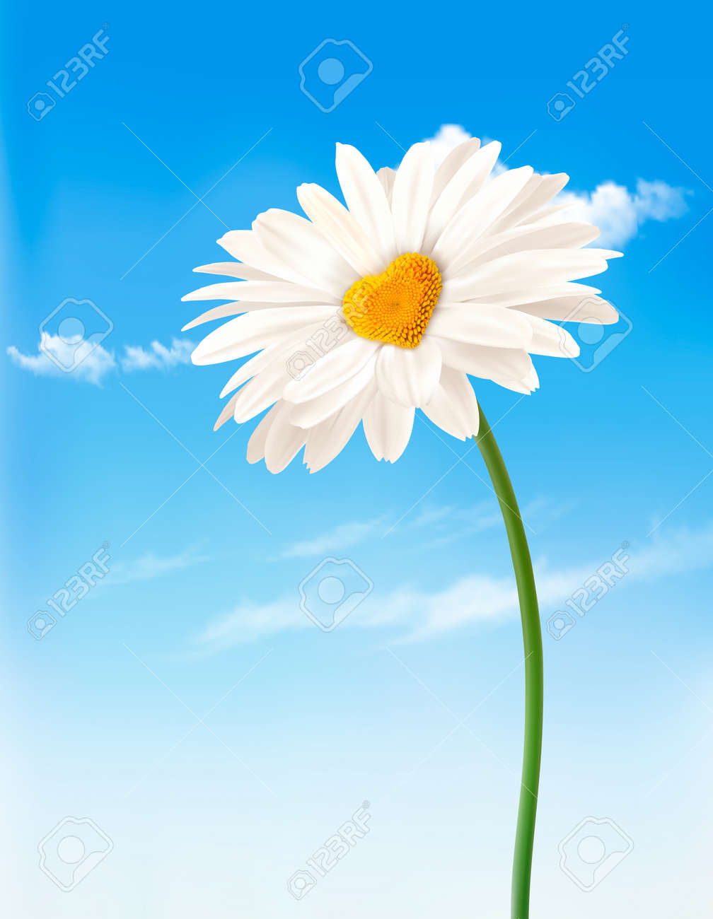 Daisy with heart shaped middle. Valentine's Day background. Vector. - 51833285