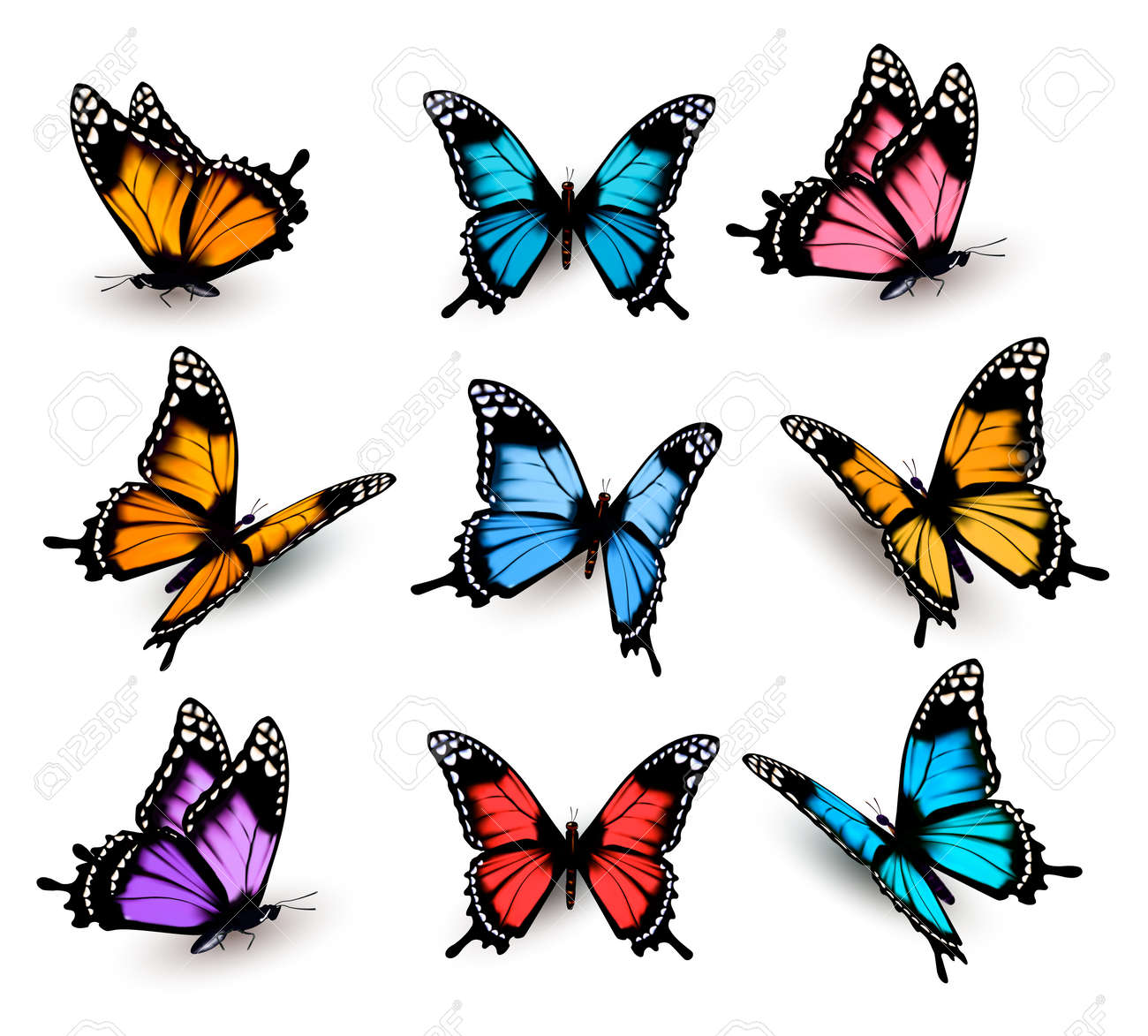 Big collection of colorful butterflies. Vector - 52440269