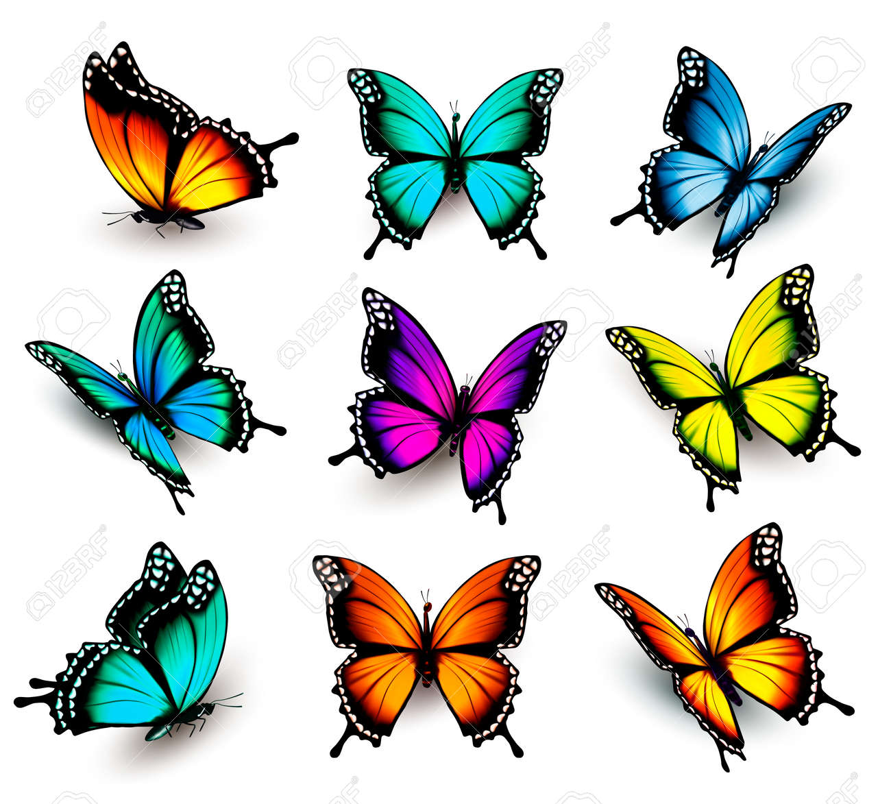 Collection Of Colorful Butterflies, Flying In Different Directions ...