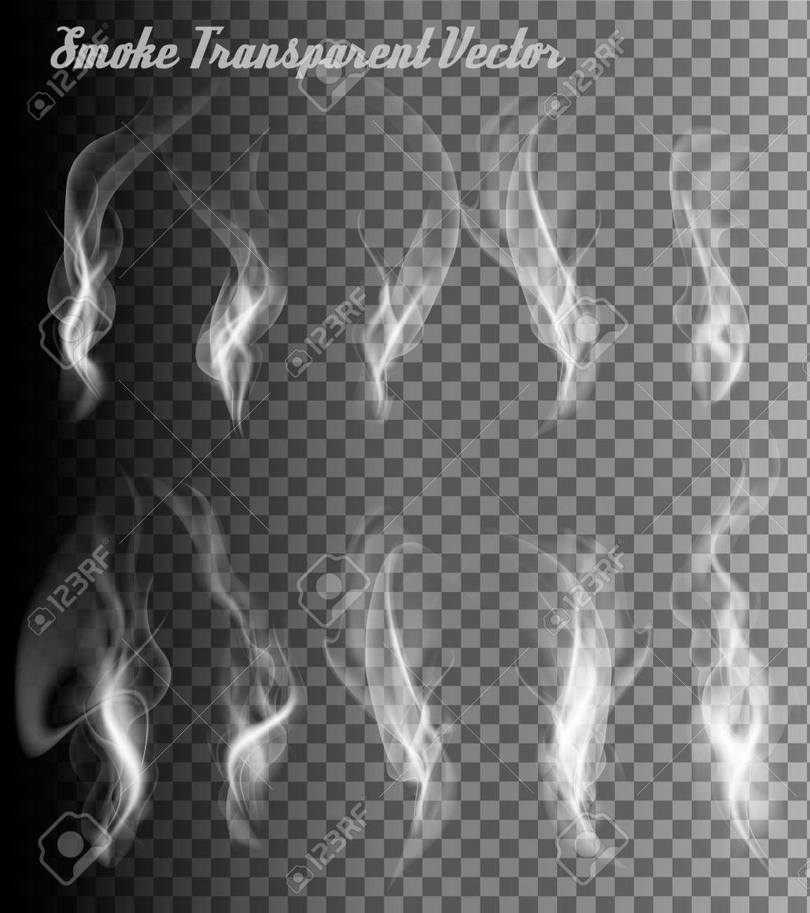 Completely transparent set of smoke vectors. - 62084040