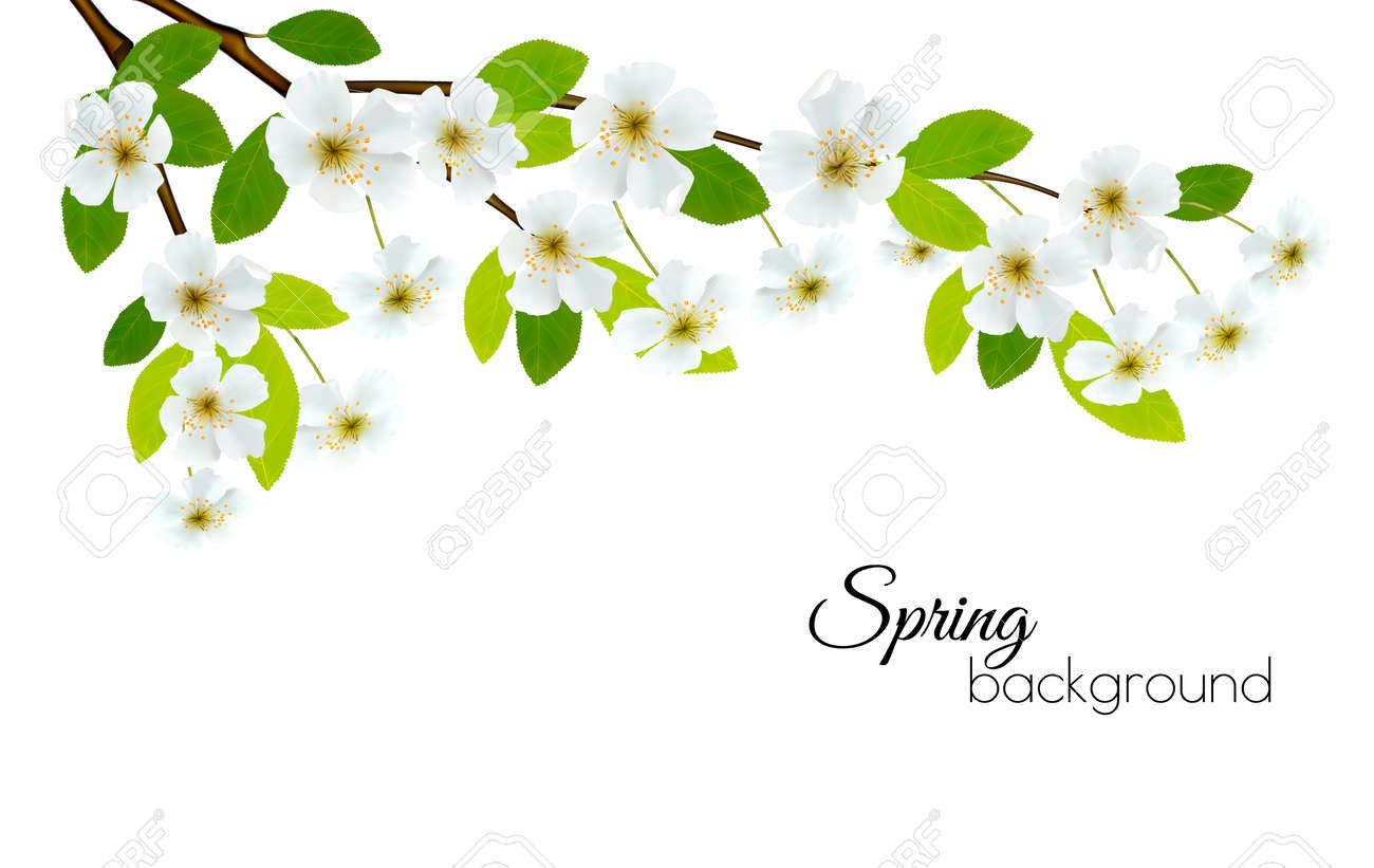 Spring background with white flowers vector royalty free spring background with white flowers vector stok fotoraf 74958563 mightylinksfo