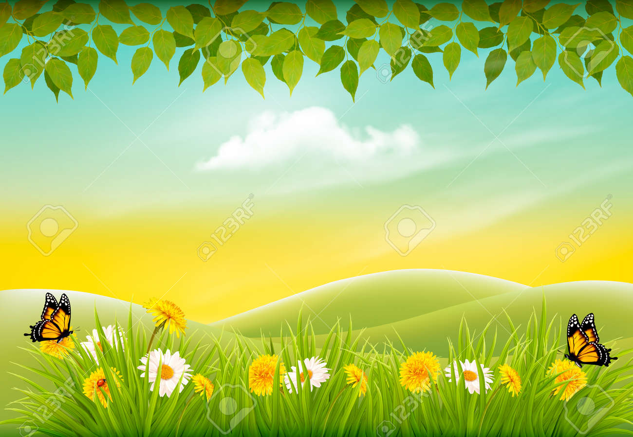 Spring Nature Landscape Background With Flowers And Butterflies