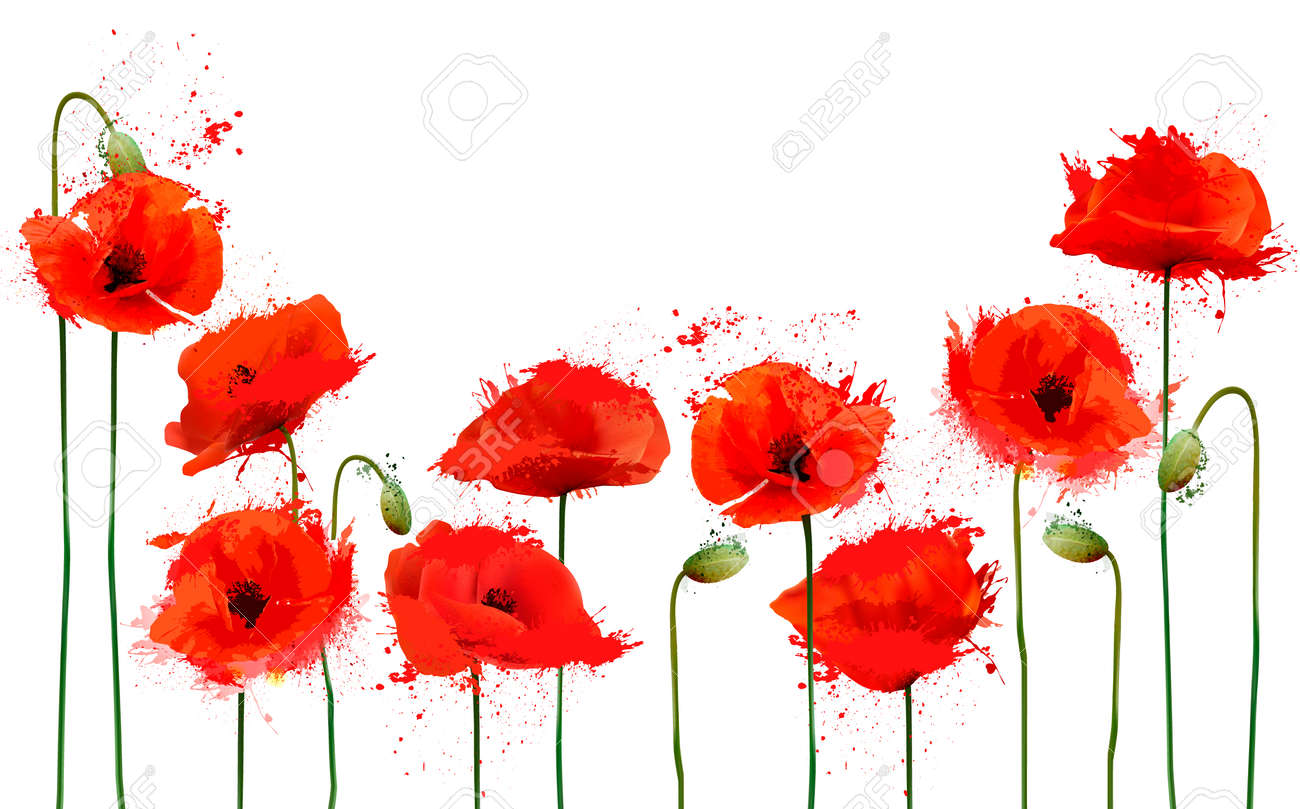Beautiful Abstract Background With Red Poppies Flowers Vector