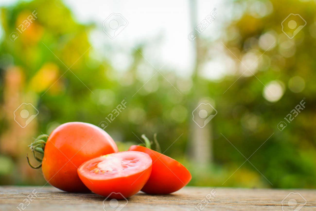 Tomato on wood in garden selective and soft focus Stock Photo - 73494698
