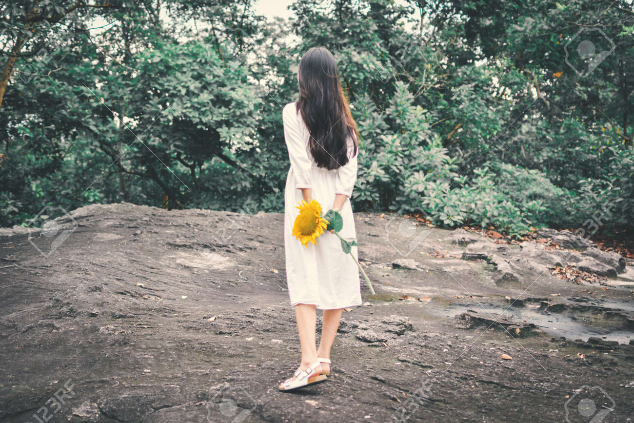 Hipster Women Hand Holding Sunflower In Forest Background Stock Photo