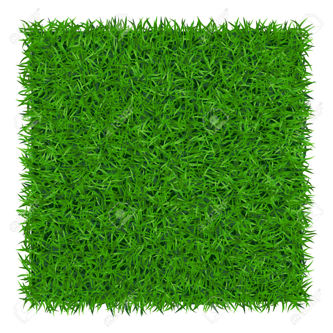 Green grass background. Lawn nature. Abstract field texture. Symbol of summer, plant, eco and natural, growth or fresh. Design for card, banner. Meadow template for print products. Vector Illustration - 54127065