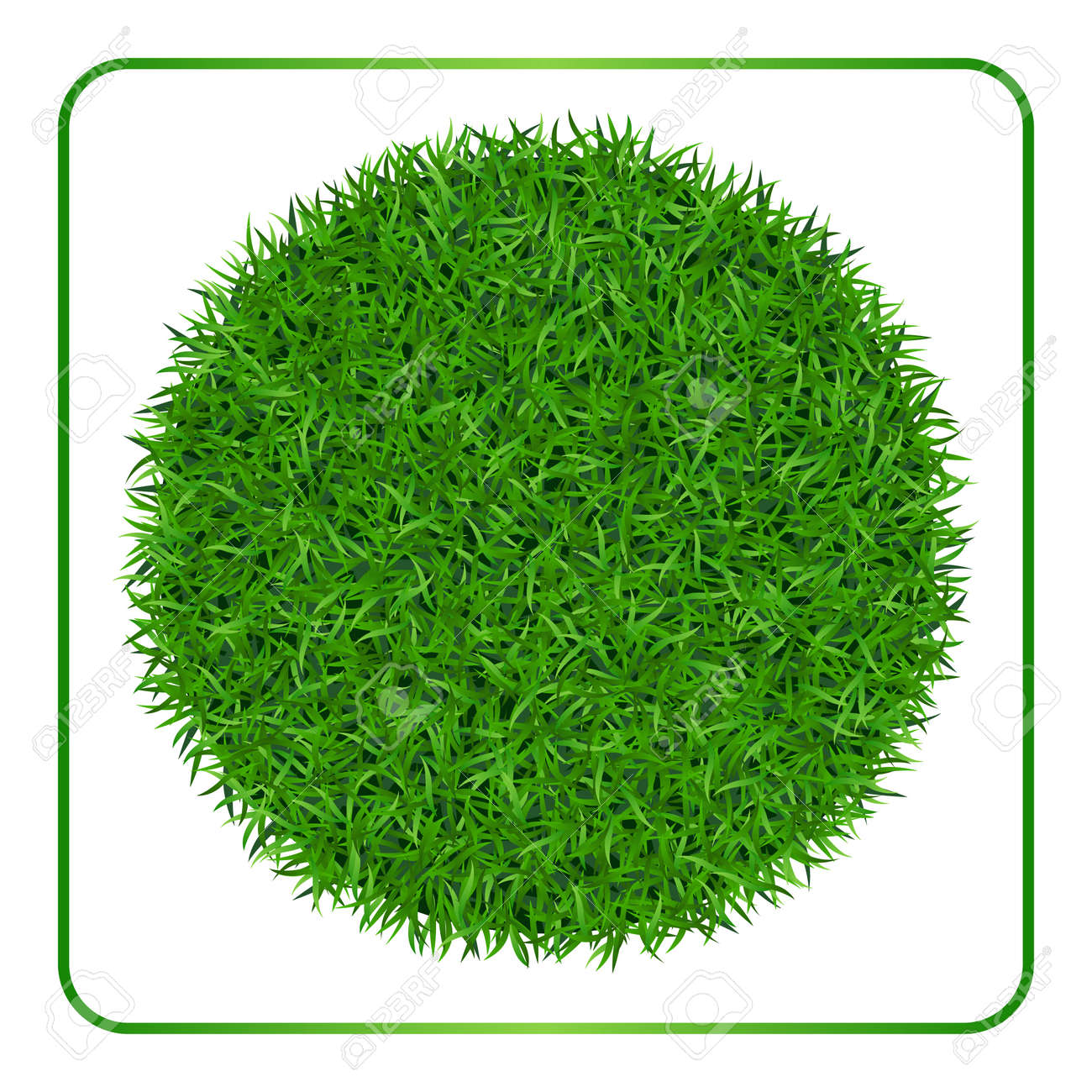 Green Grass Background. Circle Field Template Isolated On White ...
