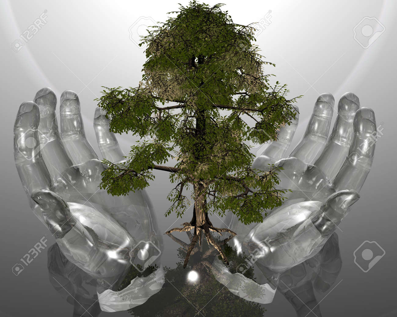 green ecological tree in glass hands on grey background Stock Photo - 3840253