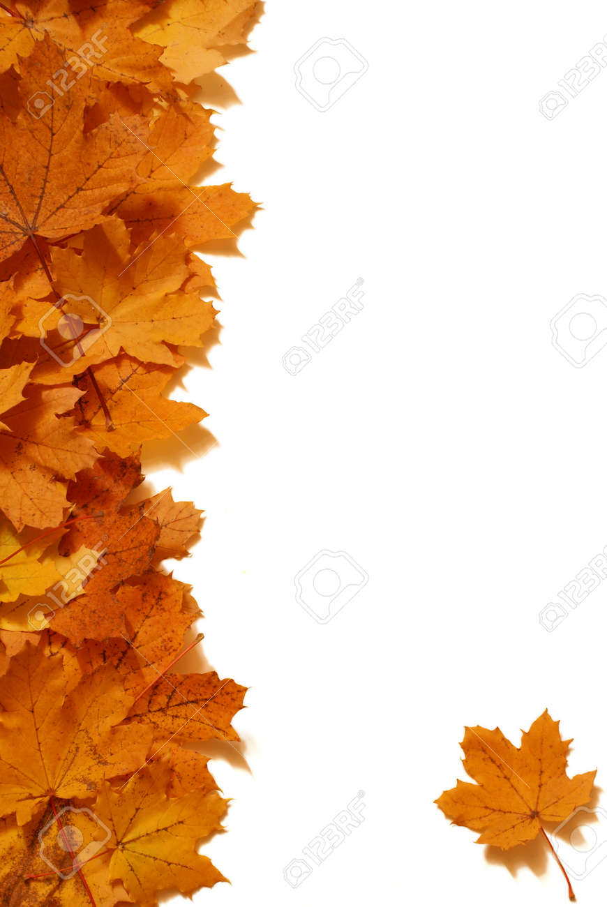 A Maple Leaf Border Design For Stationary Elements Stock Photo Picture And Royalty Free Image Image 66549057
