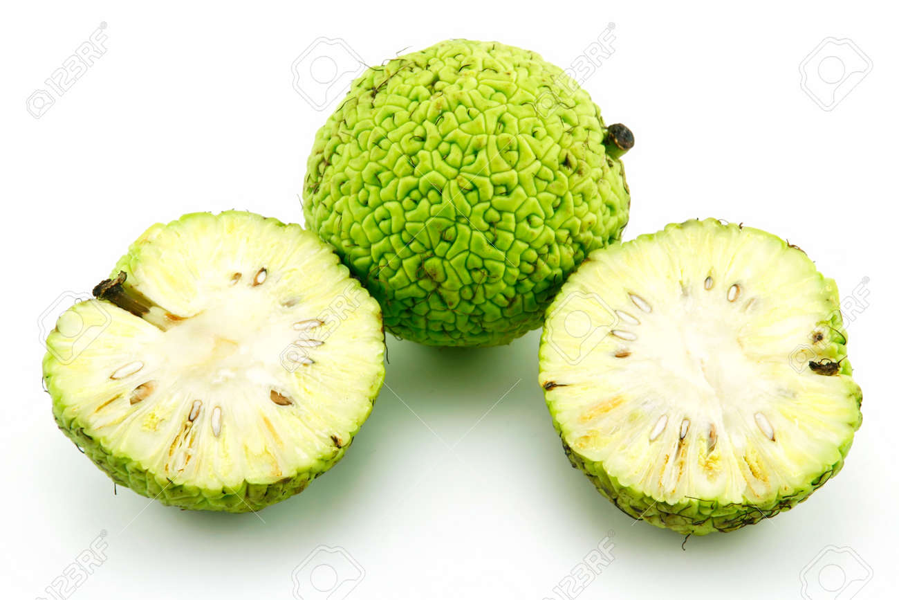 Sliced Osage Oranges (Maclura) Isolated on White Background Stock Photo - 6464447