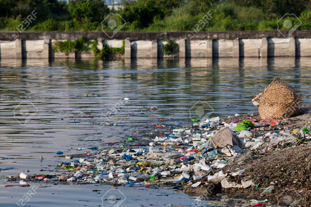 essay on water pollution in philippines The philippines is an archipelago which means we are rich in bodies of water we have 412 principal river basins in 119 proclaimed watersheds.