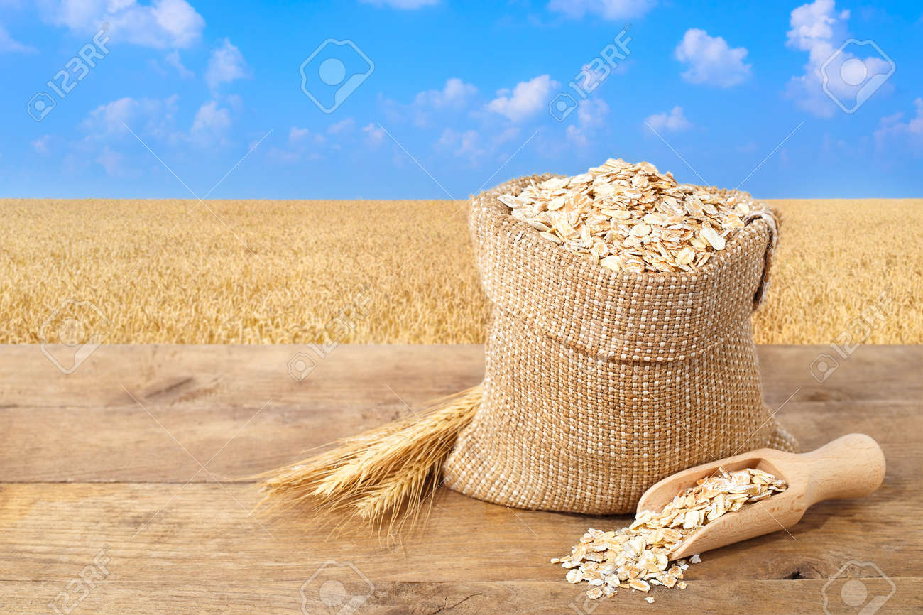 Oat flakes in sack. Ears of oats and oatmeal in bag on table with field on the background. Agriculture and harvest concept. Gold field and blue sky. Uncooked porridge - 69677982