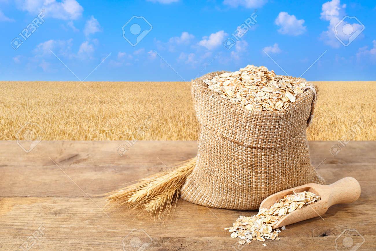 69677982-oat-flakes-in-sack-ears-of-oats