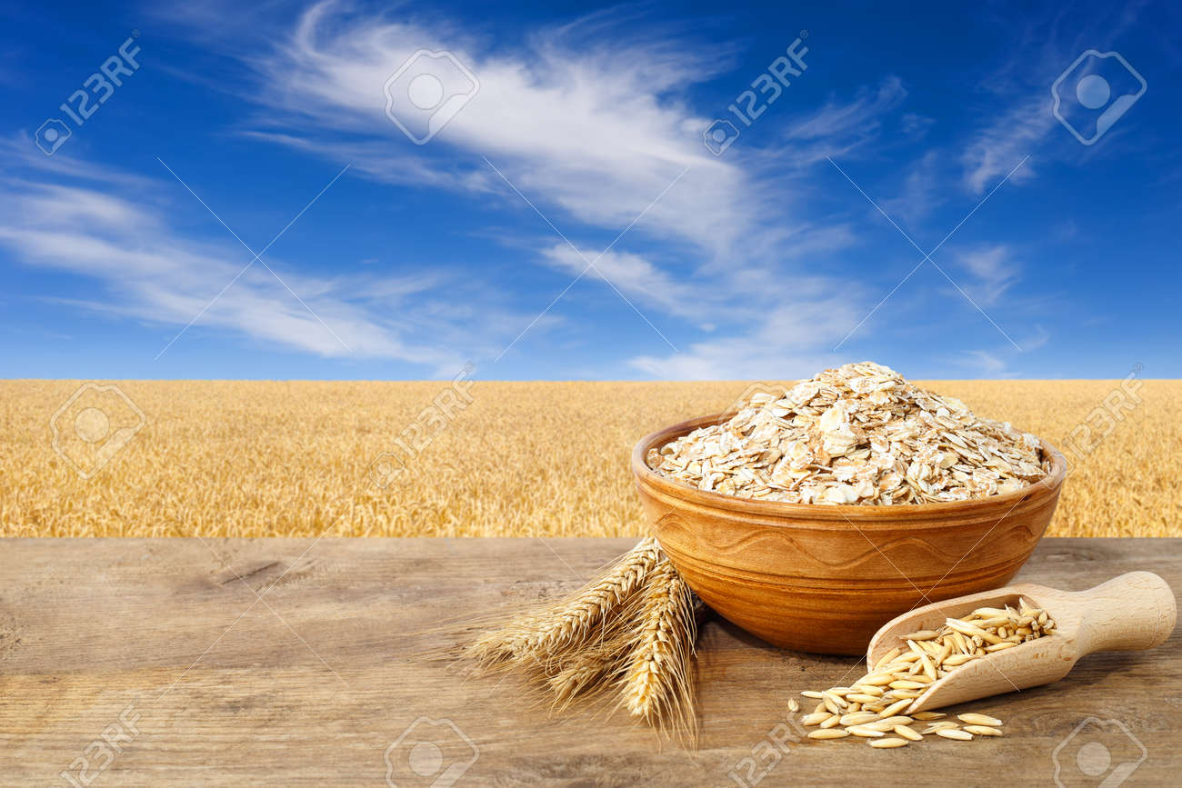 Oat flakes in bowl. Ears of oats and oatmeal in bowl on table with field on the background. Agriculture and harvest concept. Golden field and blue sky with beautiful clouds. Uncooked porridge - 69677987