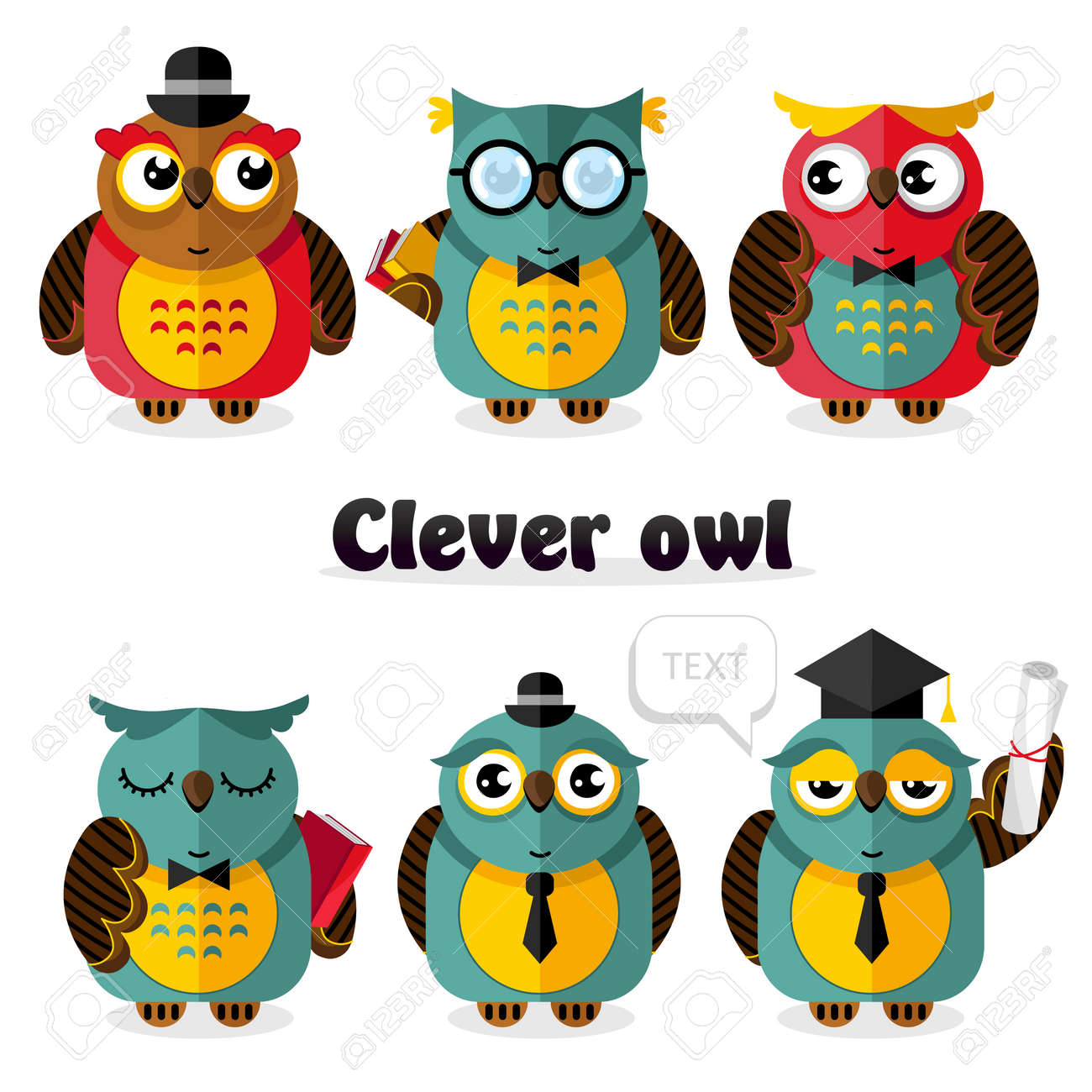 clever owl bird cartoon characters set vector illustration. science