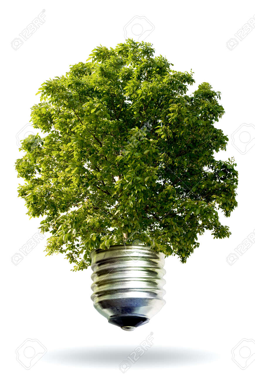ecological idea Stock Photo - 3074585