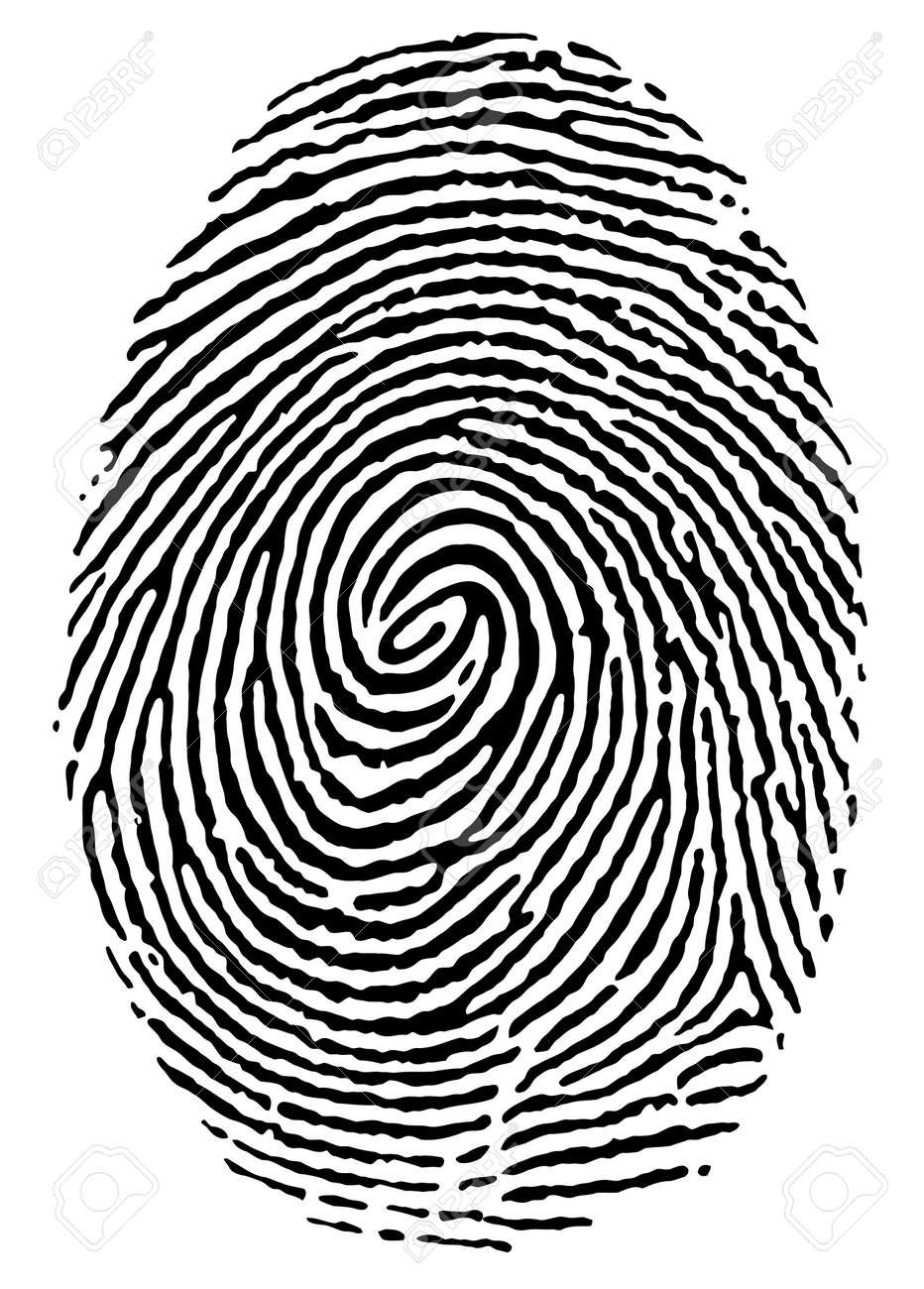 black thumbprint over white royalty free cliparts vectors and